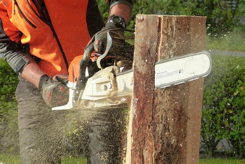 Man Cutting Tress Using Chainsaw.jpg